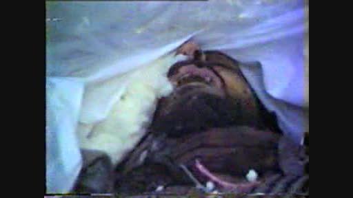 وداع مادر شهید مسعود سعادت بر بالین پیکر شهید