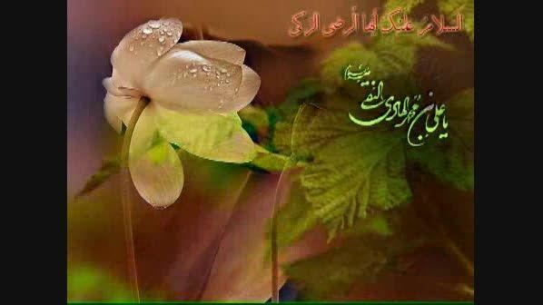 زیارت نامه امام علی النقی(علیه السلام)