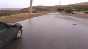 کشت برنج در استان کردستان