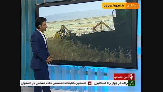 پایان برداشت گندم در قطب تولید این محصول در کشور