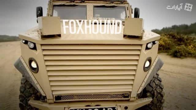 امرپ Foxhound ، سگ تازی بریتانیایی