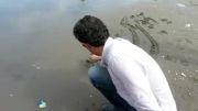 نوشتن خط کنار ساحل دریای خزر