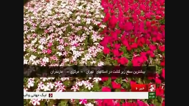 تولید گل و گیاه در ایران