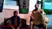 استاد فرامرز نجفی تهرانی - زیر کلام خوانی ضرب دلنشین