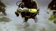 شکسته شدن تخم مرغ در زیر آب - فوق العادس
