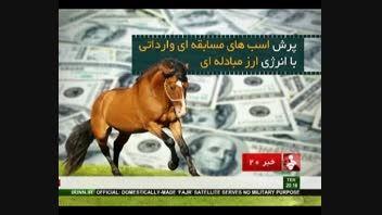 پرش اسب های مسابقه ای وارداتی با انرژی ارز مبادله ای