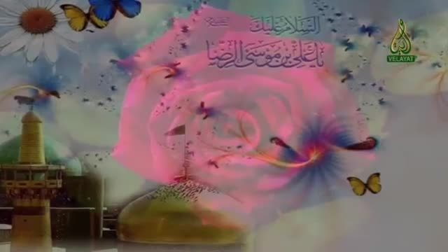 نماهنگ بسیار زیبا ویژه میلاد امام رضا(ع)-شماره 1