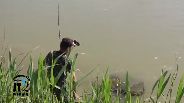 کپور گیری بزرگ را ببینید و لذت ببرید از ماهیگیری ورزشی