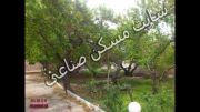 خرید و فروش باغ ویلا در شهریار کد244