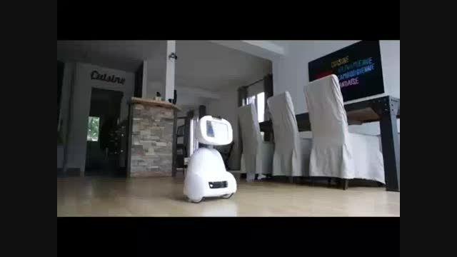 ربات دوستداشتنی و همه کاره