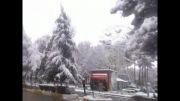 پارس آباد در یک روز برفی