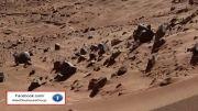 شکلی شبیه صورت انسان در مریخ 2014