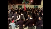 سینه زنی بوشهری