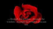 آهنگ پاپ و عاشقانه روسی با نام میلیون ملیون گل سرخ