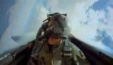 داگ فایت اف 15 با اف 16