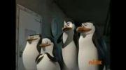 پنگوئن های ماداگاسکار-قسمت اول