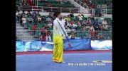 ووشو ،  تایجی جی ین ، آل چاینا گیمز 2013 ، وو یانن از شن شی