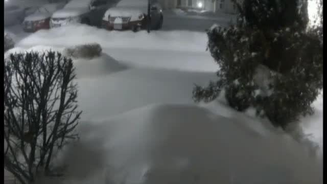 تصاویر دیدنی از نشستن برف روی زمین