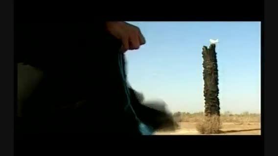 نمایی بر ترانه : ماه و ماهی با صدای حجت اشرف زاده