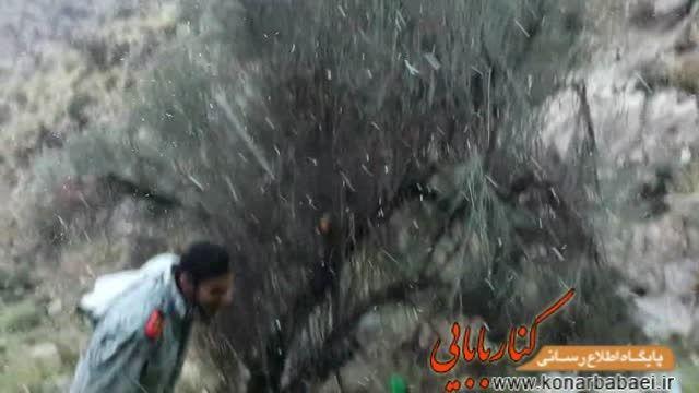 بارش برف در ارتفاعات کوه های محموداحمدی