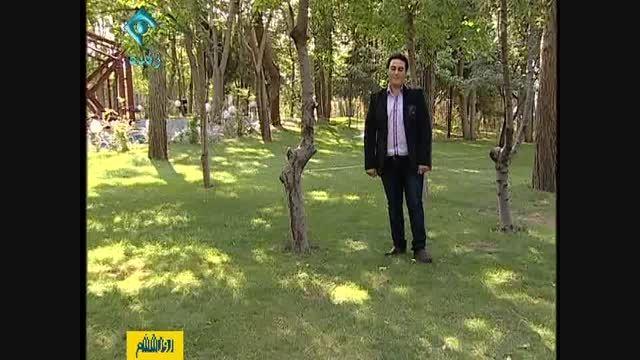 اجرای پیام بالاخانی خواننده صدا و سیما در کانال یک سیما