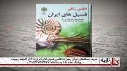 اطلس رنگی فسیل های ایرانی