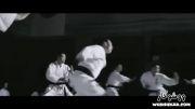 Donnie Yen - Ip Man