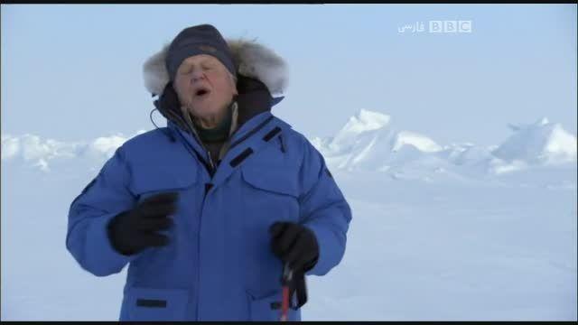 مستند سیاره یخ زده با دوبله فارسی - قسمت هشتم