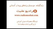 کتاب صوتی زندگی موسسان پوما،آدیداس radiomosbat.com
