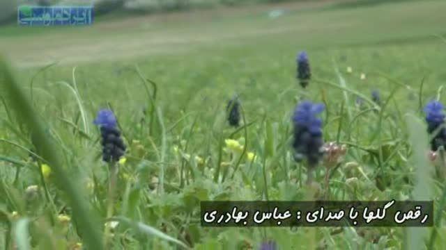 ترانه خاطره انگیز رقص گلها با صدای عباس بهادری و طبیعت