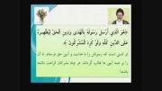 اسم امام مهدی عج کجای قرآن آمده؟(فقط نظر علمای سنی)