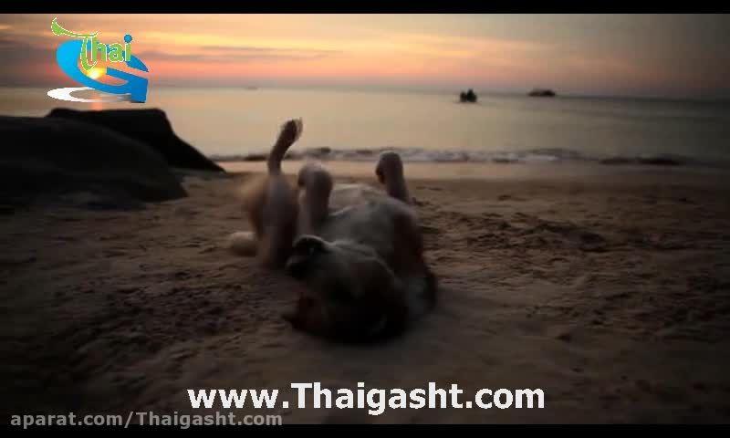گردش در تایلند 4 (www.Thaigasht.com)
