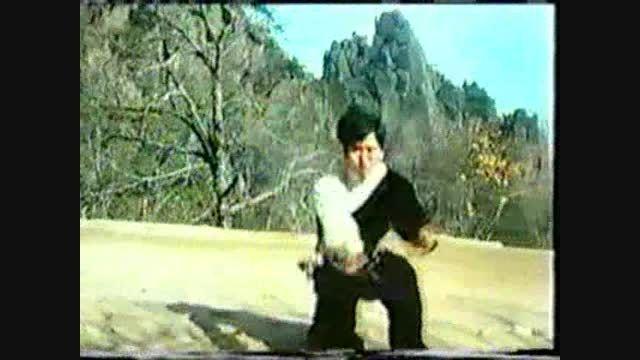 ووشو؛ اجرای فرم سنتی تقلیدی از سگ، دهه 80 میلادی