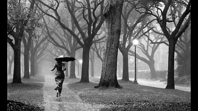 موسیقی بی کلام غمگین ویولن همراه با بارش باران