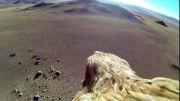 زمین از نگاه عقاب