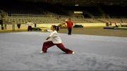 تمرین تیم ملی ووشو چین(تالو)