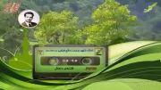 شیخ ضیایی - فتنه ی دجال ...