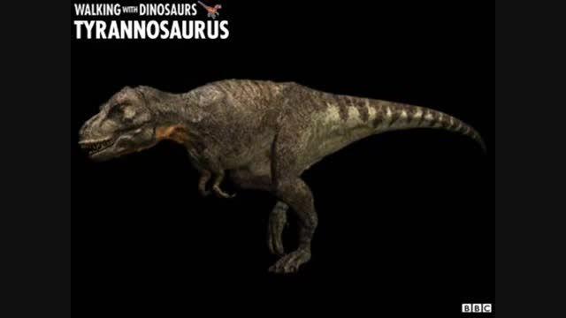 رکوردهای جالب تاریخ جانوران
