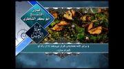 ترنم نور - القاری الشیخ ابوبکر الشاطری- سورة الزمر