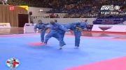 دفاع شخصی (تیم فرانسه)