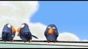 انیمیشن کوتاه For the Birds | انیمیشن کده