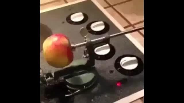 سیب فنرى