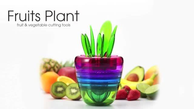 گلدان میوه جادویی Fruits Plant