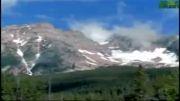 شیر کوهی vs گرگ  ( مقایسه در شبکه دیسکاوری )