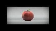 Apple vs black berry