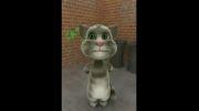 گربه زبان بلوچی