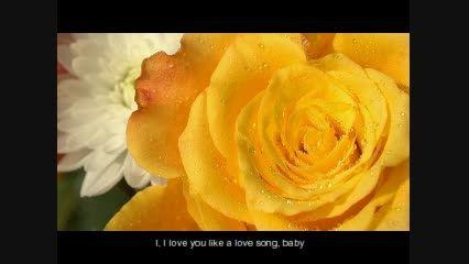 selena gomez - I LOVE YOU LIKE A LOVE SONG سلنا گومز