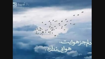 آهنگ جدید و بسیار زیبای ساتراپ شجایی به نام امید عاشقی