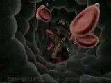 خون ـ blood 3