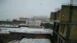 بارش برف ، بهمن سپیدان را سفید كرد
